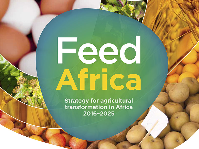 African Development Bank – Feed Africa Strategy 2016–2025